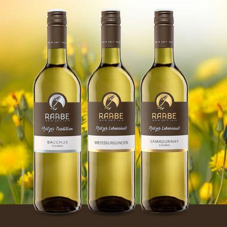 Weinpaket Frühjahr Frühjahrsortiment